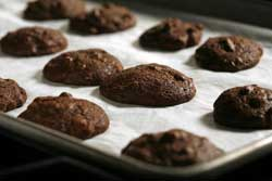 Chocolate-Pecan Cookies