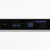 Electronic Temperature Control