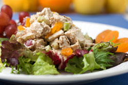 Better-Than-Chicken Turkey Salad